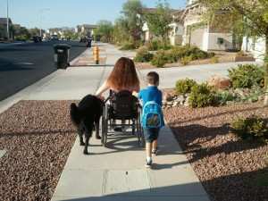Disability Spinal Cord Injury
